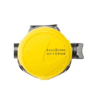 Aqualung: Calypso octopus