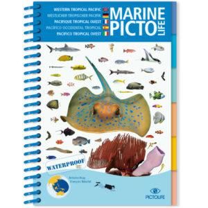 Marine Pictolife: Aziatische Oceaan