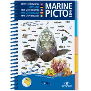 Marine Pictolife: Middellandse zee